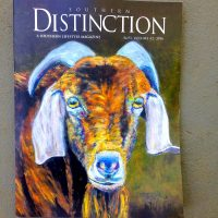 Southern Distinction cover